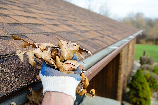 Top Ten Household Maintenance Tips